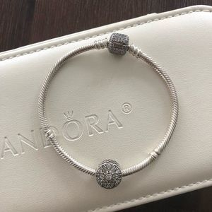 Pandora bracelet and charm winter collection